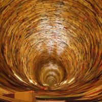Psicologa Osimo - Difficoltà di educare